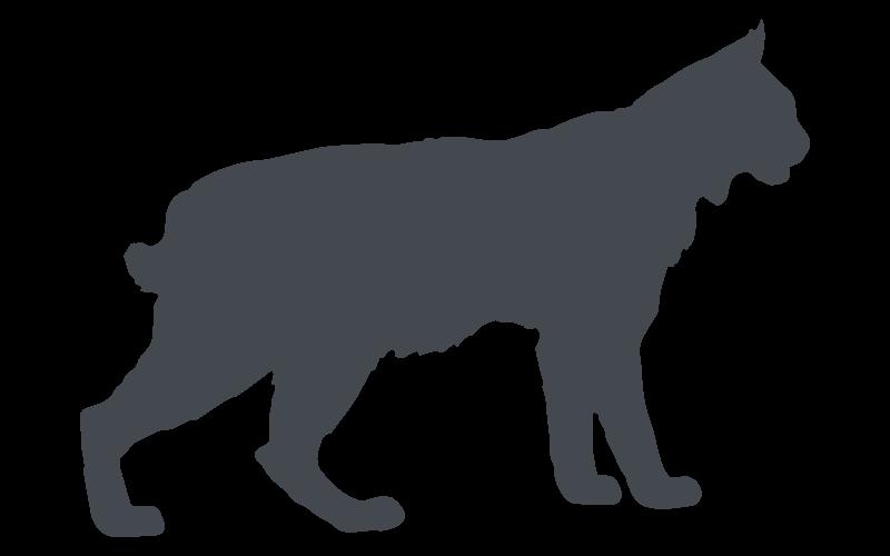 Florida Bobcat Pest Control