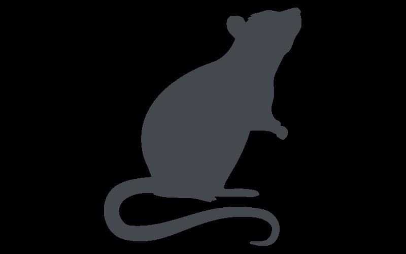 Florida Rodent Pest Control